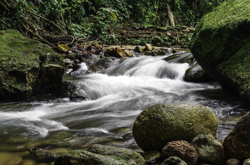 Каскады водопада стоковое фото rf