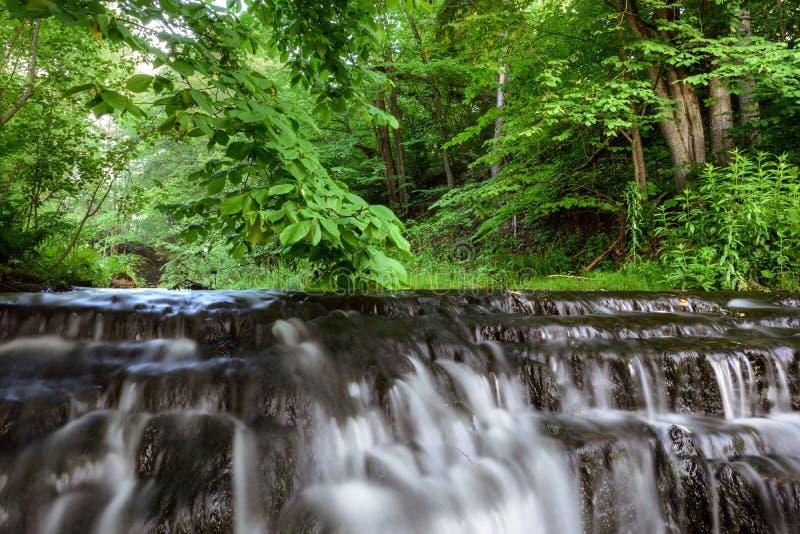 Каскады воды стоковые изображения rf