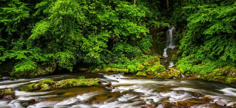 Каскады и водопад на вороне развлетвляют, около Cherokee, северного Кэрола стоковые изображения