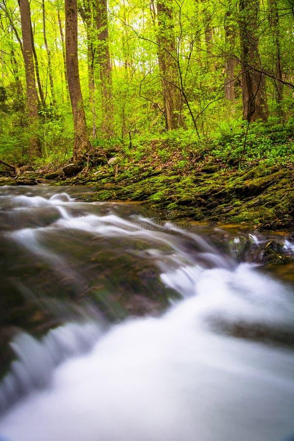 Каскады на потоке в Holtwood, Пенсильвании стоковая фотография