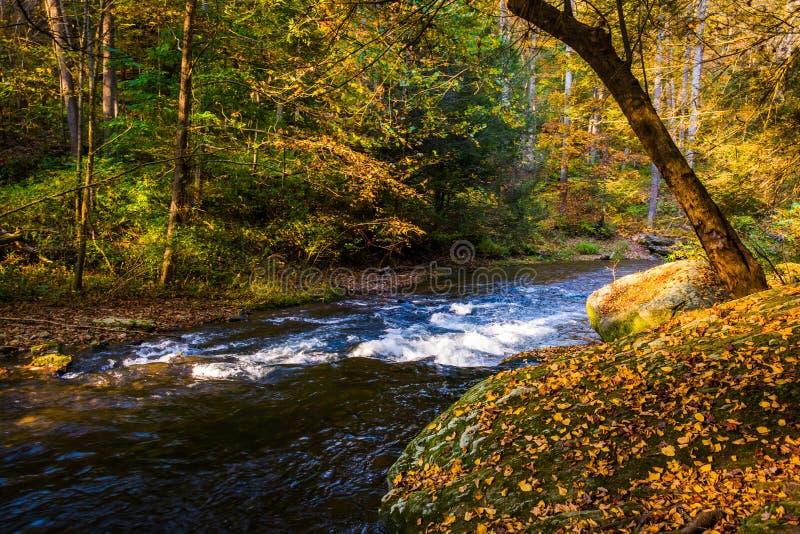 Каскады на реке пороха в порохе падают парк штата, m стоковое изображение rf