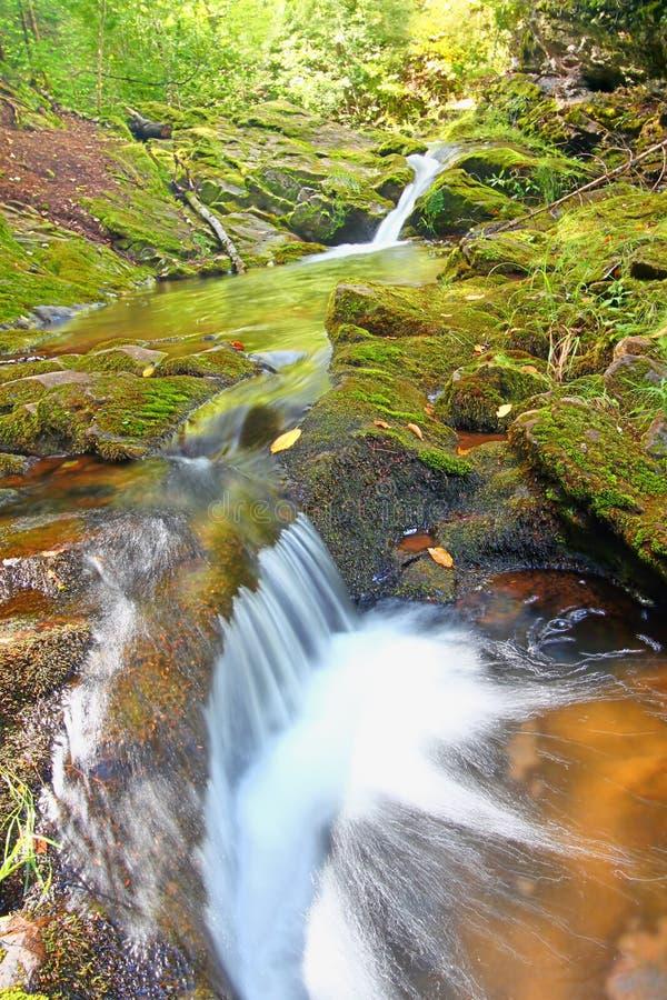 Каскады ущелья реки соединения стоковое изображение