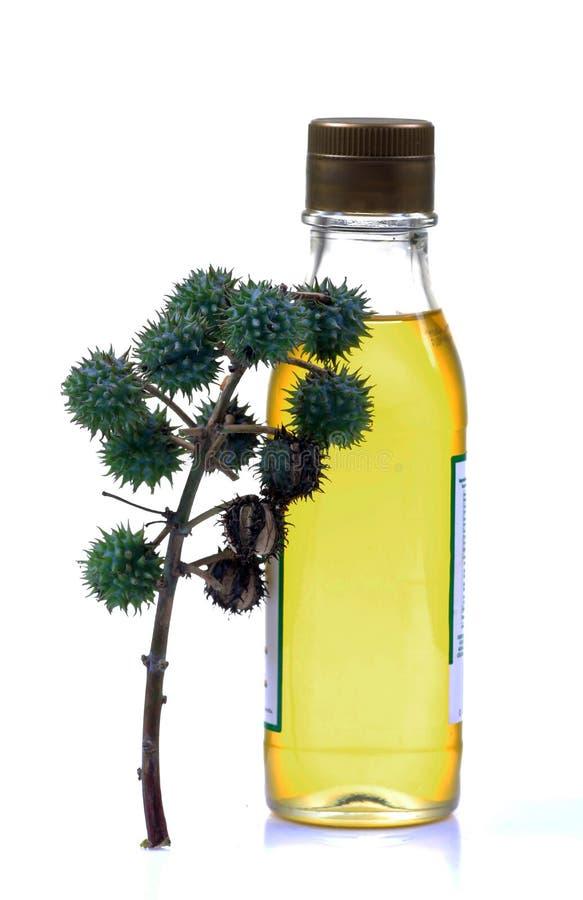касторовое масло бутылки стоковая фотография rf
