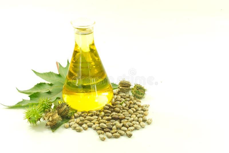 Касторовое масло стоковая фотография rf