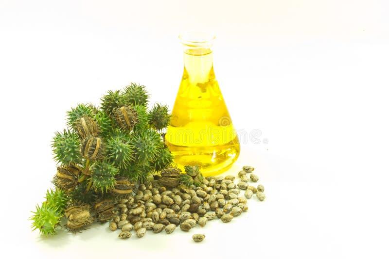 Касторовое масло стоковые изображения