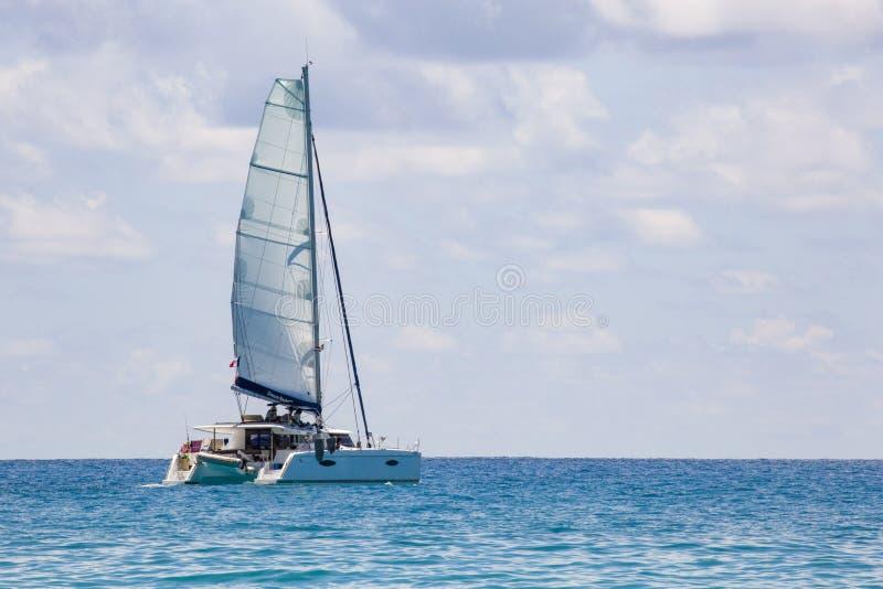 Катамаран ветрила стоковое изображение rf