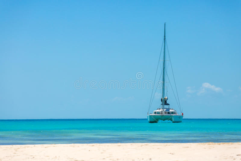 Катамаран на пляже стоковые изображения rf