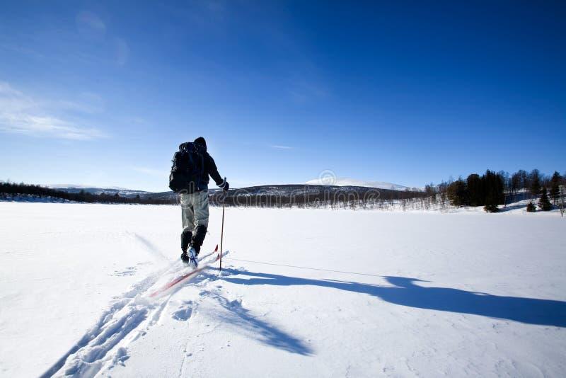 катание на лыжах задней страны стоковая фотография rf