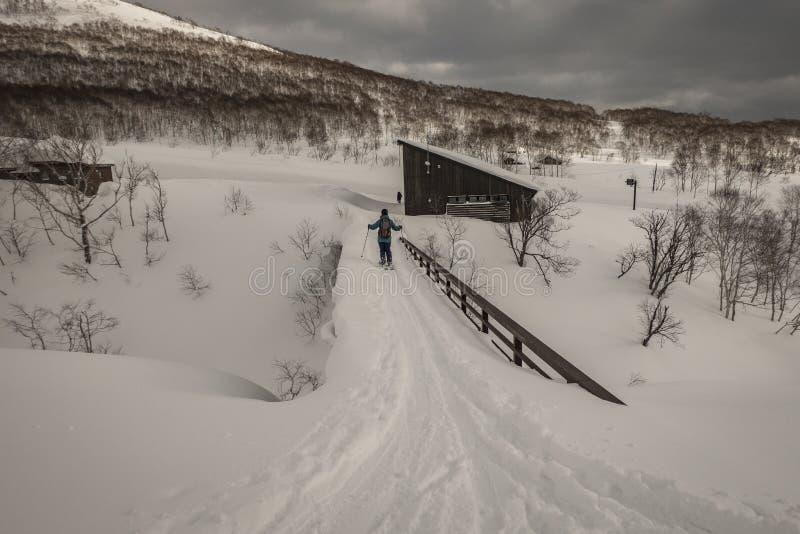 Катание на лыжах лыжника на горе на пасмурный день стоковое фото rf