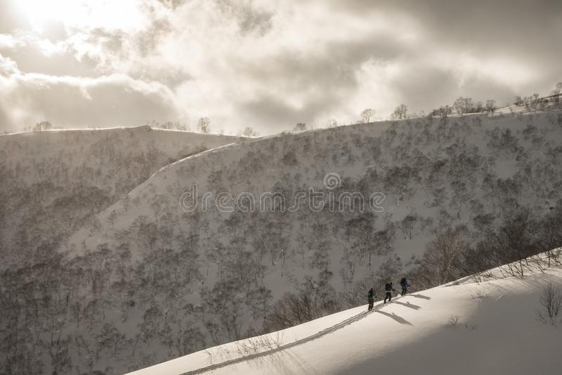 Катание на лыжах лыжника на горе на пасмурный день стоковые изображения rf