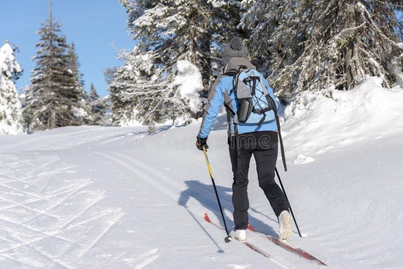 Катание на лыжах по пересеченной местностей женщины стоковое фото