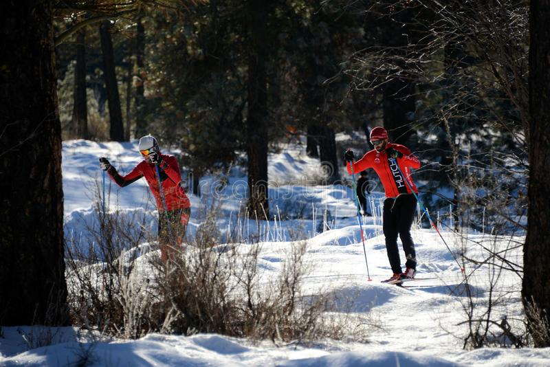 Катание на лыжах по пересеченной местностей стоковое фото