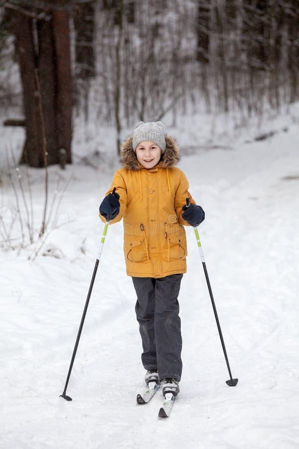 Катание на лыжах спортсмена дилетанта маленькой девочки в лесе зимы снежном, без сокращений стоковые изображения rf