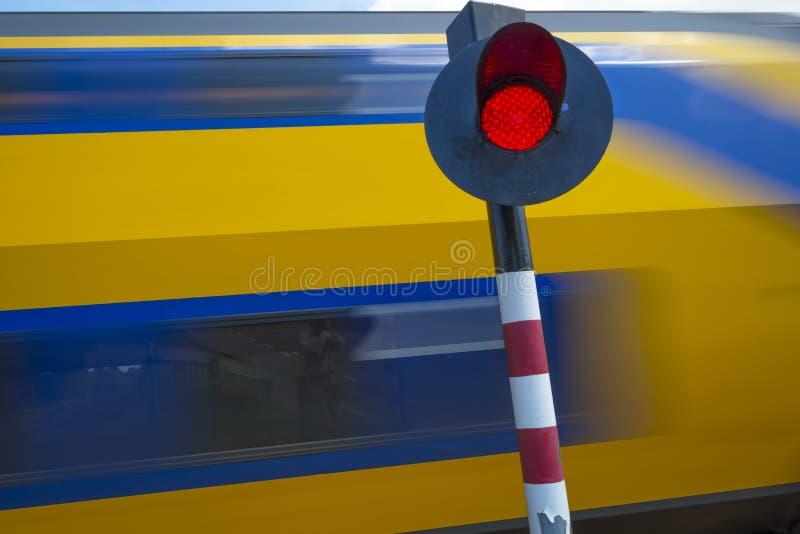 Катание поезда через природу в солнечном свете стоковое фото rf