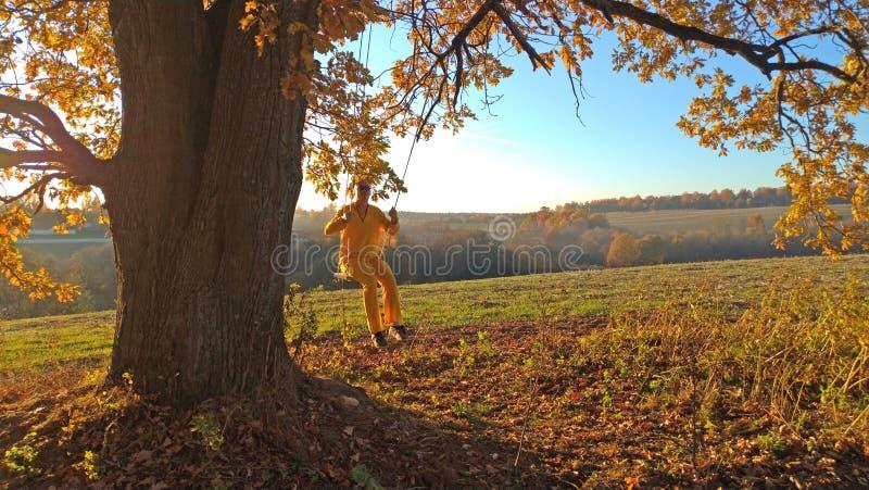 Катание человека на качании, связанном к дубу осени Романс осени Сиротливое дерево, дуб стоковые фото