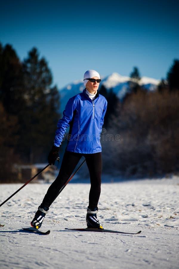 Кататься на лыжах в альп стоковая фотография