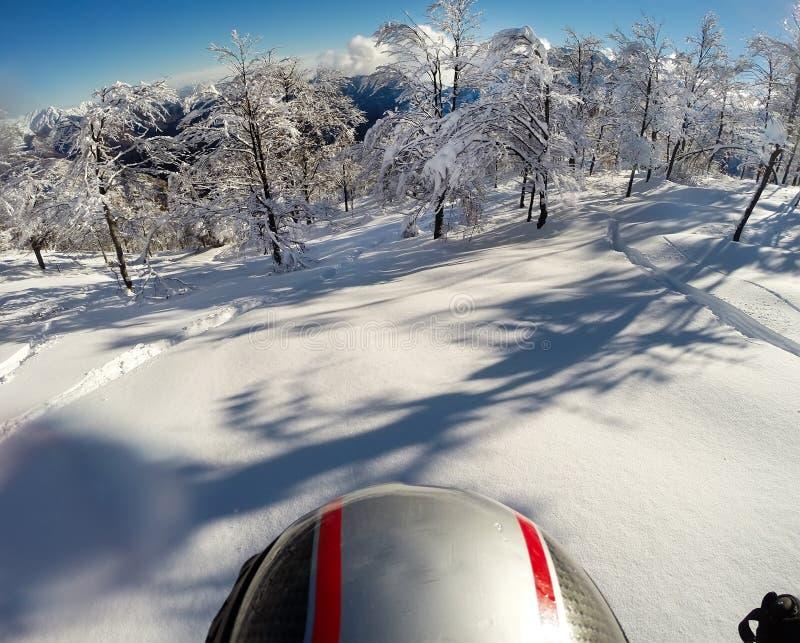 Кататься на лыжах в свежем снеге POV используя кулачок действия на шлеме стоковое фото rf