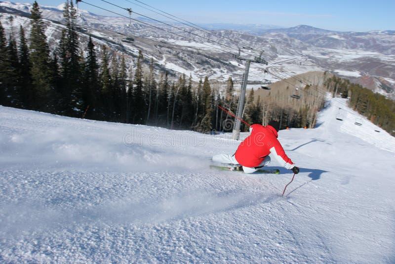 Катающся на лыжах в Aspen, Колорадо стоковые фото