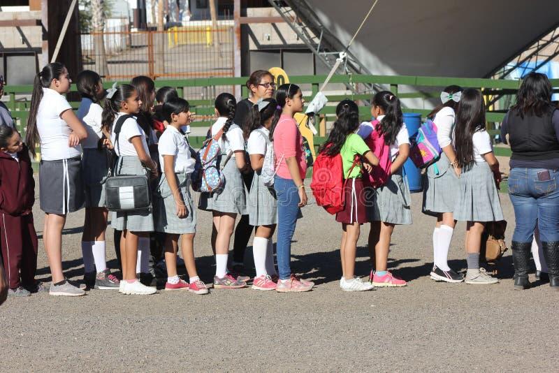 Католические школьницы wainting в линии стоковое фото