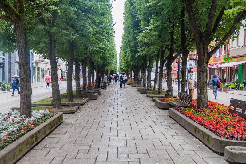 КАУНАС, ЛИТВА - 16-ОЕ АВГУСТА 2016: Люди идут вдоль улицы aleja Laisves в Каунасе, Lithuani стоковое изображение