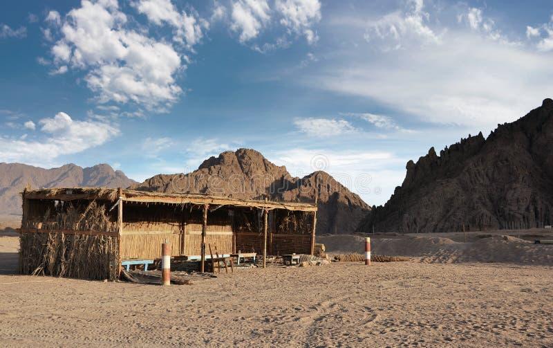 Кафе бедуина обочины Египет стоковые фотографии rf