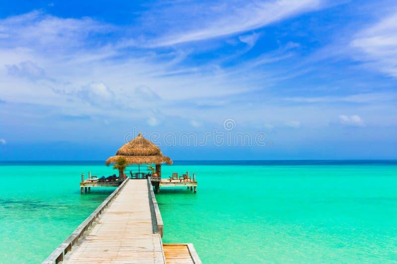 Кафе воды на пляже стоковое фото rf