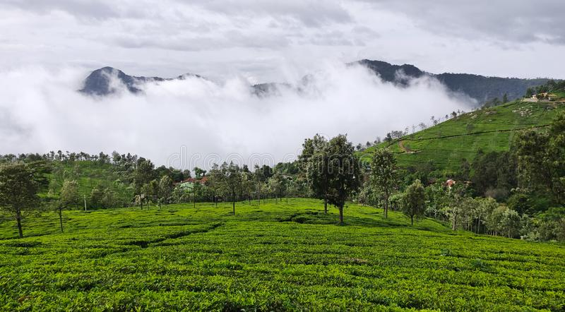 Кафе на открытом воздухе на холмах Coonoor под дождливыми облаками муссона стоковое фото