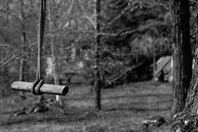 Качание и древесина веревочки стоковое фото rf