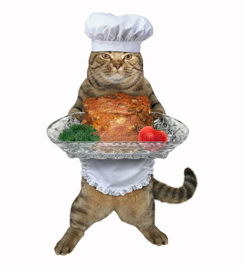 Кашевар кота с испеченной говядиной стоковые фото