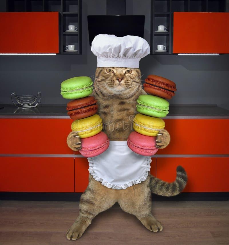 Кашевар кота с печеньями в кухне 2 стоковое фото