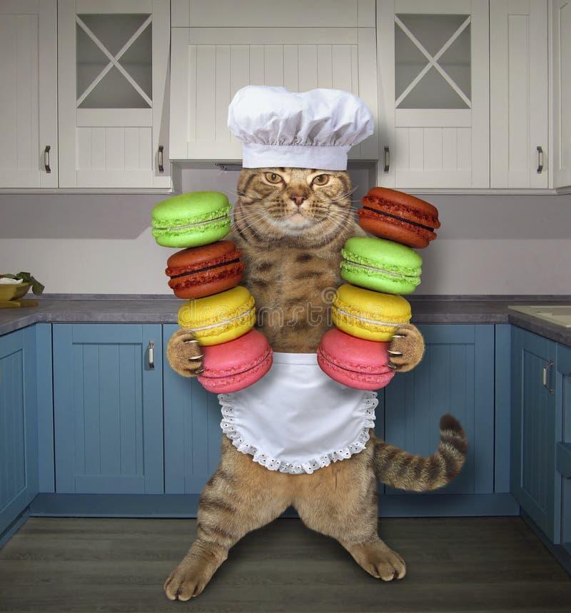 Кашевар кота с печеньями в кухне стоковые фотографии rf