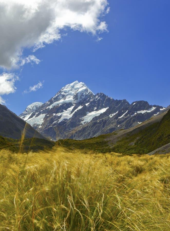 кашевар mt Новая Зеландия стоковое фото rf