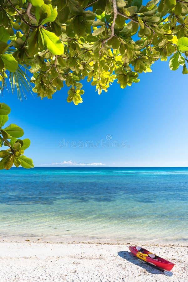 Каяк моря на сиротливом пляже Anda белом островов Bohol стоковые изображения rf