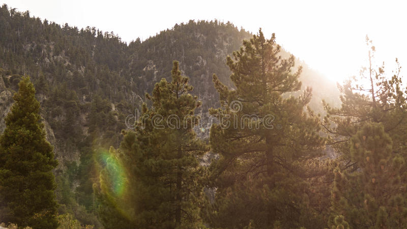 калифорнийский заход солнца стоковое фото
