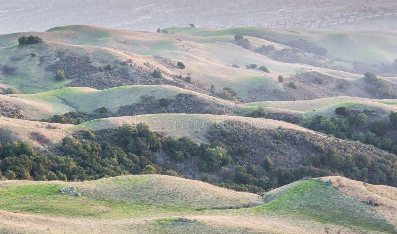 Калифорния Rolling Hills и предпосылка Кремниевой долины стоковые изображения