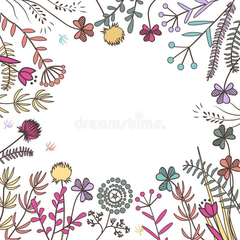 Квадратная рамка с травами луга также вектор иллюстрации притяжки corel иллюстрация штока