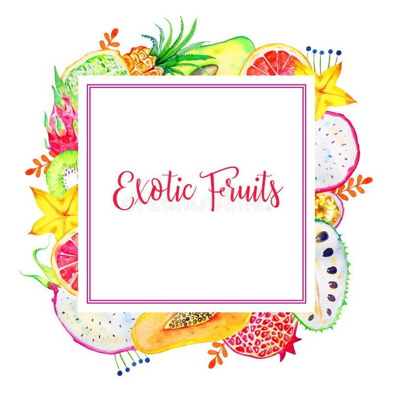 Квадратная рамка с экзотическими плодами Киви, pitahaya, цитрус, карамбола, папапайя, гранатовое дерево, ананас бесплатная иллюстрация