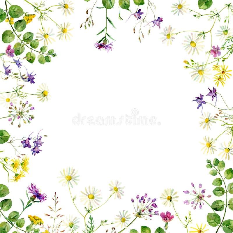 Квадратная рамка цветков иллюстрация вектора