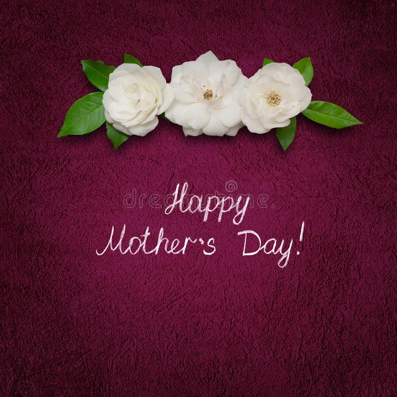 Квадратный день матерей поздравительной открытки счастливый с цветками белой розы стоковое фото