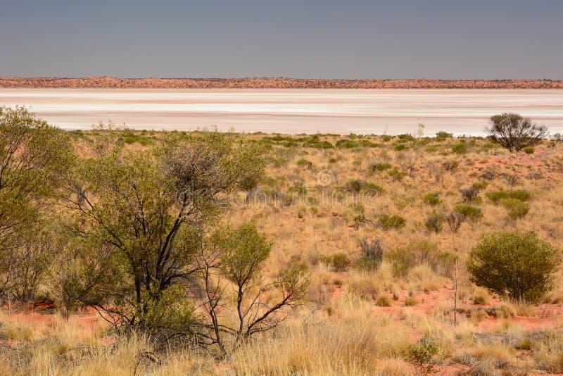 Квартира соли, часть цепи озера сол Amadeus Северные территории australites стоковое изображение