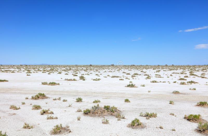 Квартиры соли Bonneville против голубого неба стоковые изображения rf