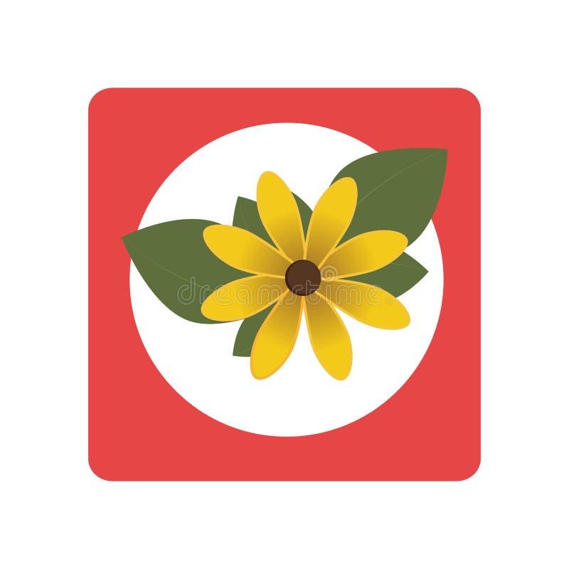 Квадратная кнопка с желтым цветком бесплатная иллюстрация