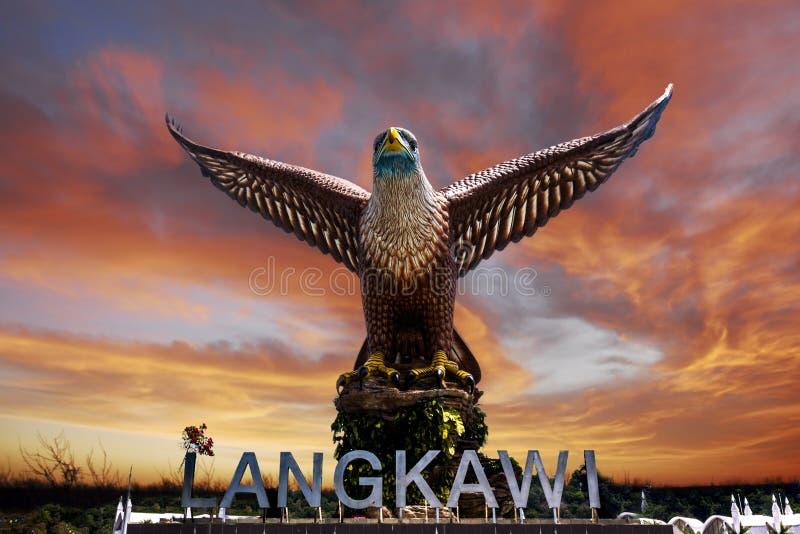 Квадрат орла стоковая фотография