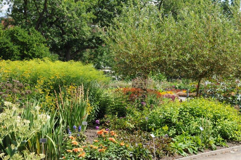 Квебек, ботанический сад Монреаля стоковое изображение rf