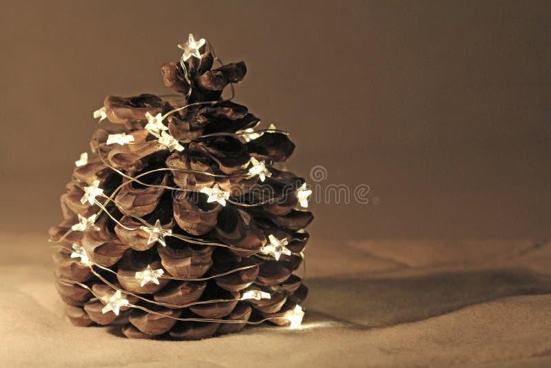 Кедр циннамона одеванный с гирляндами Нового Года или рождества стоковое фото