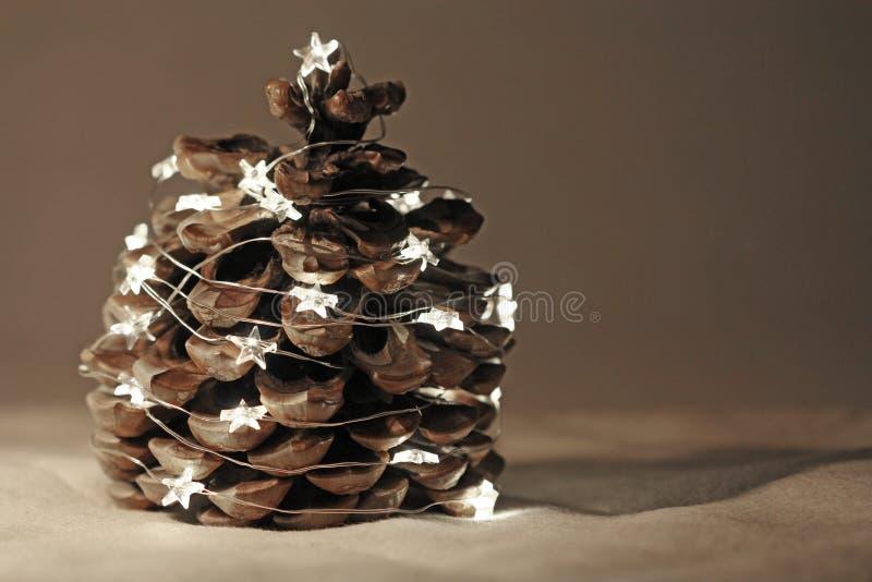Кедр циннамона одеванный с гирляндами Нового Года или рождества стоковые изображения