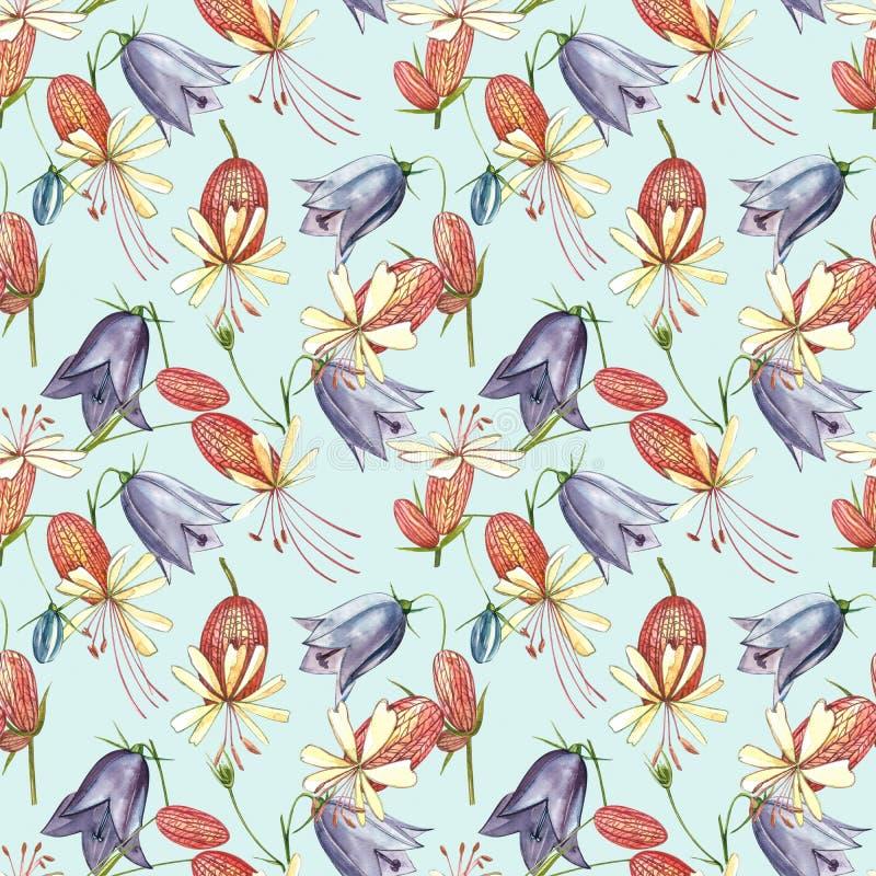 Кемпион-кемпион-блайдер и цветы-булочки Набор водокраски из цветочных кукурузных цветов, цветочных элементов, ручной нарисованный стоковые фотографии rf