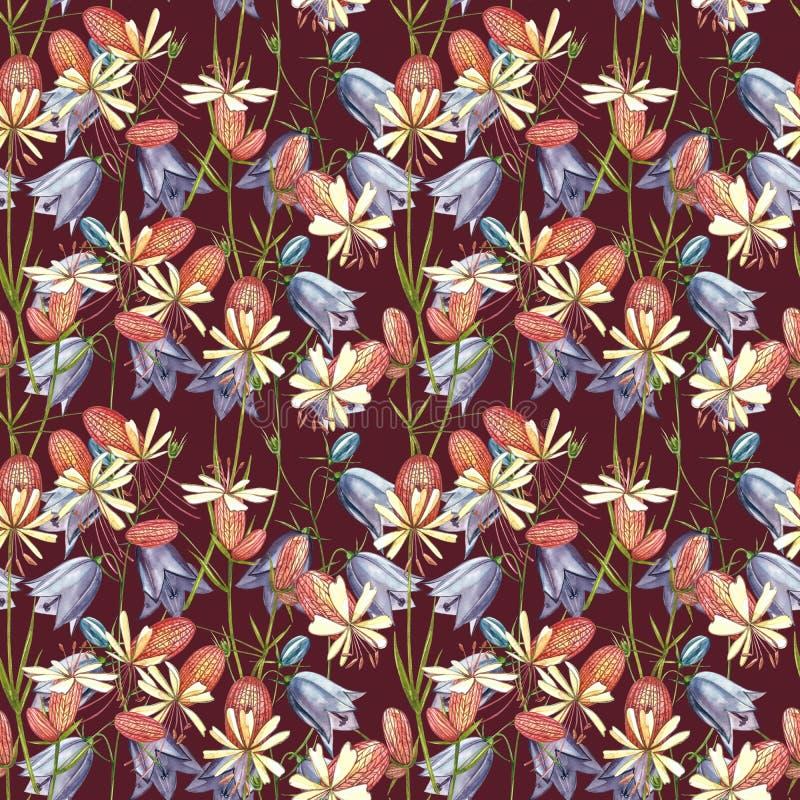 Кемпион-кемпион-блайдер и цветы-булочки Набор водокраски из цветочных кукурузных цветов, цветочных элементов, ручной нарисованный стоковое фото rf