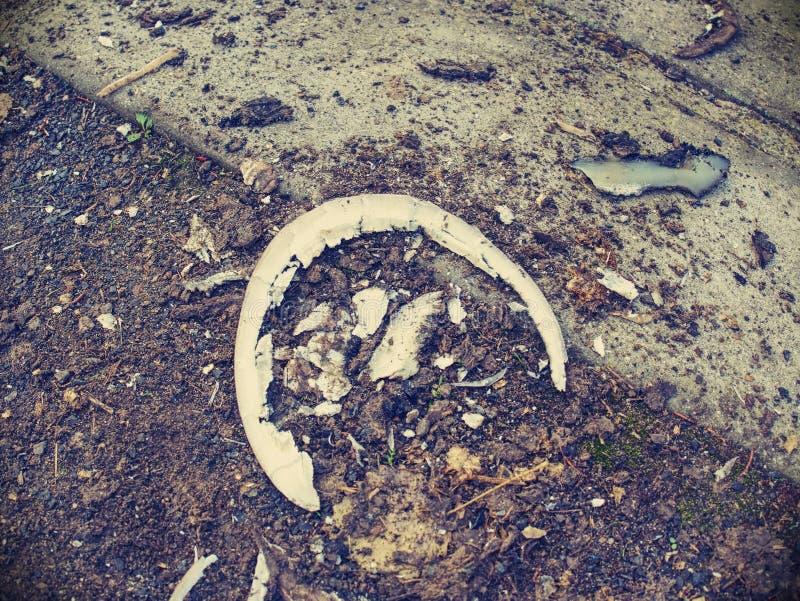Кератин талии после модуляции копыт лошади стоковое фото rf