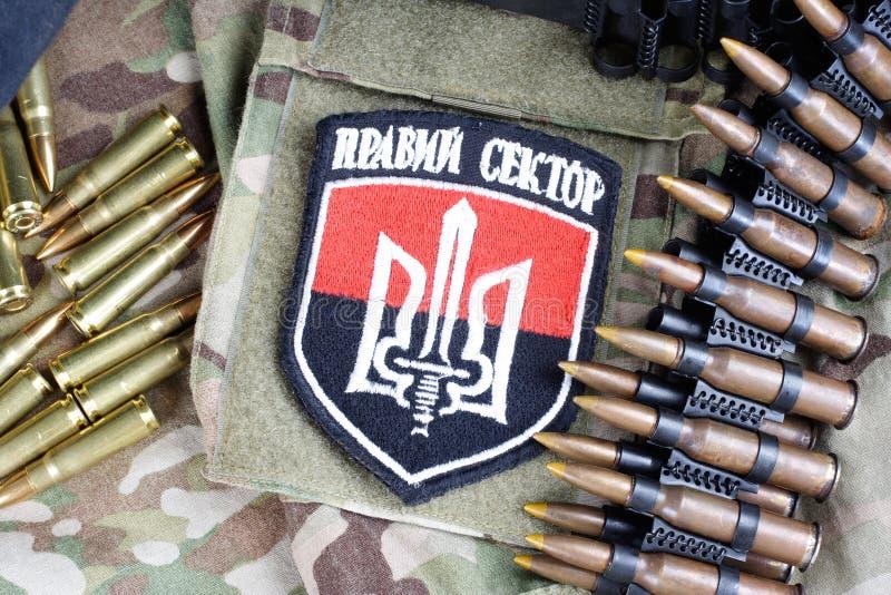 КИЕВ, УКРАИНА - 8-ое июля 2015 Шеврон украинца вызывается добровольцем корпус с словами стоковое изображение rf
